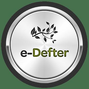 E-Serbest Meslek Makbuzu( E-SMM)